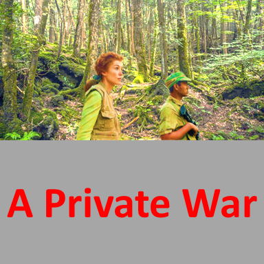 A Private War,