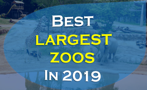 Best Zoos in the world, Largest Zoos in the world in 2019 are San Diego Zoo,,London Zoo,,Beijing Zoo,Henry Doorly Zoo,The Bronx Zoo,Moscow Zoo