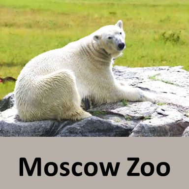 Moscow Zoo, Best Zoos in the world, Largest Zoos in the world in 2019
