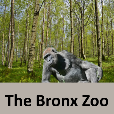 the bronx zoo, Best Zoos in the world, Largest Zoos in the world in 2019